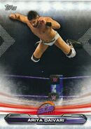 2019 WWE Raw Wrestling Cards (Topps) Ariya Daivari 76
