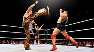 WWE WrestleMania Revenge Tour 2014 - Rotterdam.13