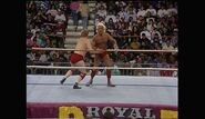 Royal Rumble 1993.00031