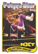 2018 WWE Heritage Wrestling Cards (Topps) Velveteen Dream 110