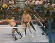 February 6, 1988 WWF Superstars of Wrestling.00011