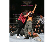 WrestleMania 22.19