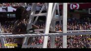 Best of WrestleMania Theater.00009