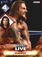 2013 TNA Impact Wrestling Live Trading Cards (Tristar) Gunner 73