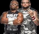Dudley Boyz