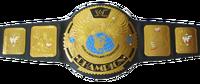 WWF Attitude Era Championship