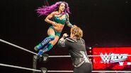 WWE World Tour 2017 - Birmingham 13