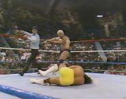 February 20, 1988 WWF Superstars of Wrestling.00009