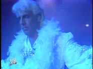 Ric Flair and The 4 Horsemen.00012