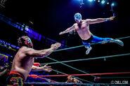 CMLL Domingos Arena Mexico (December 1, 2019) 17