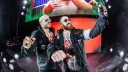 WWE World Tour 2017 - Birmingham 17