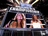 WrestleMania 22/Image gallery
