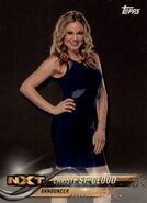 2018 WWE Wrestling Cards (Topps) Christy St. Cloud 25