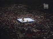 August 25, 1984 MSG results.00024