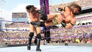 WrestleMania 33.8