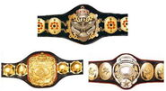 AJPW Triple Crown Championship