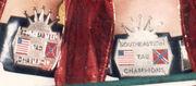 NWA Southeast Tag Team Champions