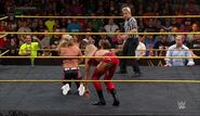 NXT's Greatest Matches Vol. 1.00010