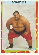 1995 WWF Wrestling Trading Cards (Merlin) Yokozuna 20