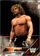 2016 WWE (Topps) Then, Now, Forever Brian Pillman 157