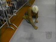 January 22, 1996 Monday Nitro.00008