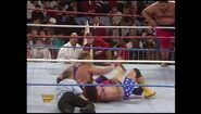 Survivor Series 1993.00028