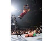 WrestleMania 22.12