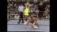 WrestleMania IX.00033