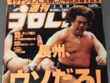 Weekly Pro Wrestling No. 1208