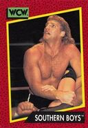 1991 WCW (Impel) Southern Boys 135