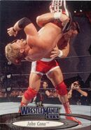2003 WWE WrestleMania XIX (Fleer) John Cena (No.12)
