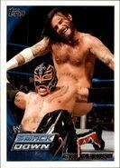 2010 WWE (Topps) CM Punk (No.36)