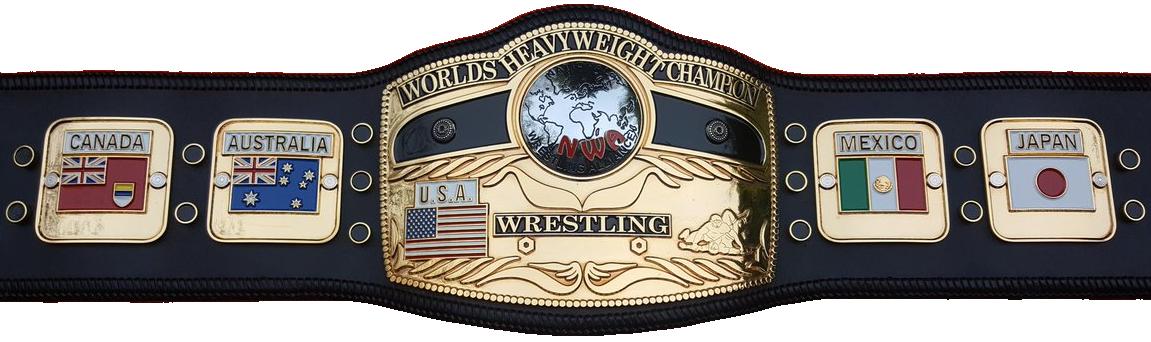 List of WCW World Heavyweight Champions  Wikipedia