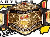 MCW Cruiserweight Championship