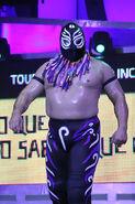 CMLL Domingos Arena Mexico (January 12, 2020) 11
