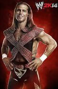 WWE2K14 Shawn Michaels.1