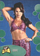 2001 WWF The Ultimate Diva Collection (Fleer) Ivory 31
