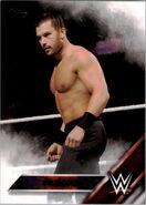 2016 WWE (Topps) Fandango 20