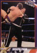 2013 TNA Impact Glory Wrestling Cards (Tristar) Joseph Park 19