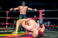 CMLL Domingos Arena Mexico (October 20, 2019) 3