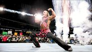 WrestleMania 19.10