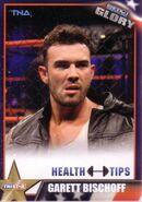 2013 TNA Impact Glory Wrestling Cards (Tristar) Garett Bischoff 83