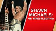 Shawn Michaels Mr. WrestleMania