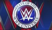 State of The WWE Universe 1