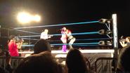 3-15-13 TNA House Show 3