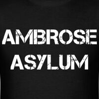 Ambrose Asylum logo