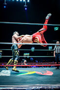 CMLL Martes Arena Mexico (December 3, 2019) 13