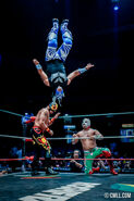 CMLL Martes Arena Mexico (September 24, 2019) 12