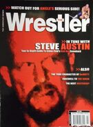 The Wrestler - July 2003