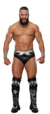 Tony Nese Stat Photo